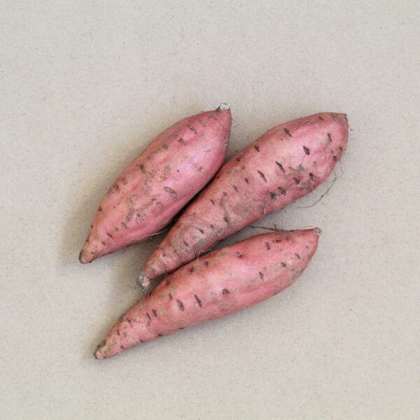 Organic Sweet Potato
